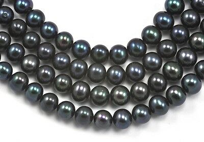 7-8mm Peacock Black  Near Round Freshwater Pearls Beads A for Jewellery Making