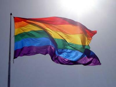 FREEDOM RAINBOW GAY Pride 3x5 Foot SuperPoly Indoor/Outdoor FLAG Banner*USA MADE