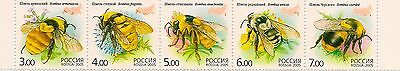 RUSSLAND RUSSIA 2005 FAUNA INSECTS ** POSTFRISCH MiNr: 1266 - 1270