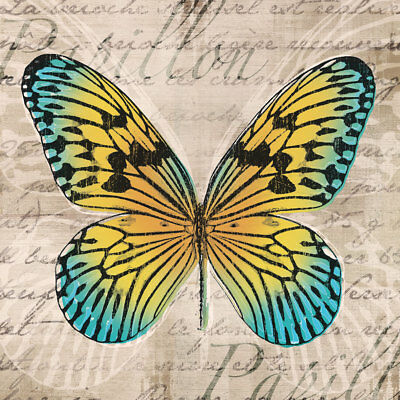 BUTTERFLIES ART PRINT BY TANDI VENTER yellow turquoise butterfly poster