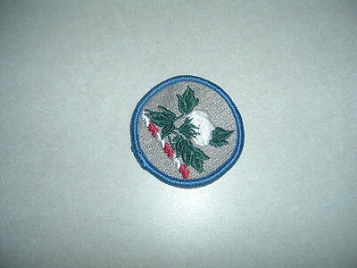 GENUINE US MILITARY PATCH ARMY ALABAMA NATIONAL GUARD COLORED NEW OLD STOCK