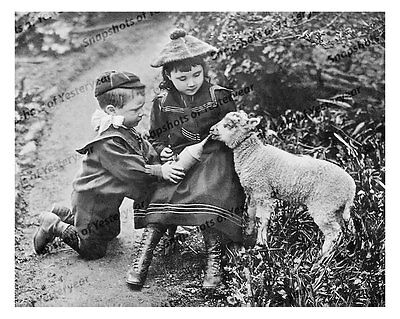 pre-1900s era vintage photo-Little boy and girl feeding lamb-bottle-hats-8x10 in