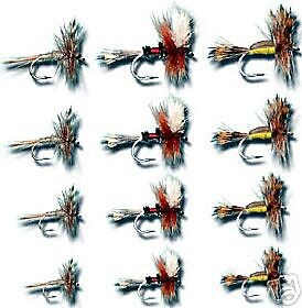 1 Doz Attractor Assortment  Fly Fishing Flies Size All