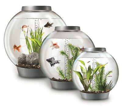 Oase Biorb Coldwater With Standard Led Light 15 30 60 Litre Fish Tank Bowl