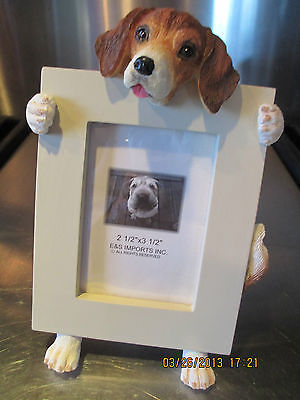 Beagle ~ Picture Frame  # 3