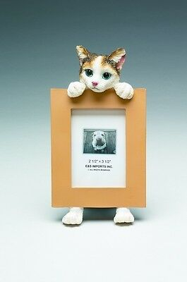 Calico Cat ~ Picture Frame  16 -2