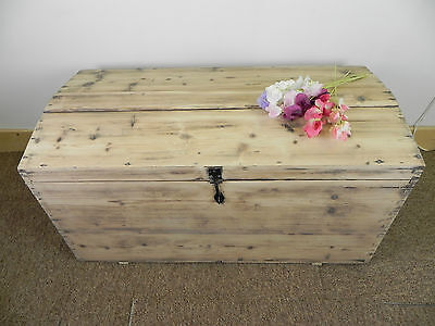 antique old pine domed chest or trunk