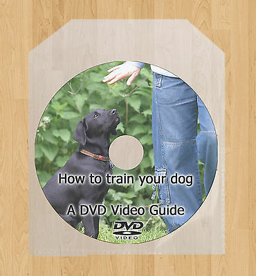 Dog Training, train your puppy DVD video tutorial guide lessons behaviour issues