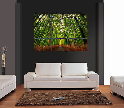 BAMBOO FOREST A3 Multipage Giant Wall Art Print Picture Poster