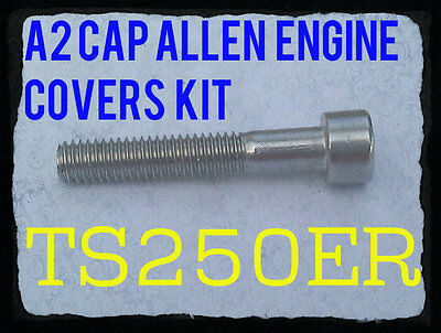A2 Stainless Philips Head Screws Suzuki A100 Crankcase Covers Kit