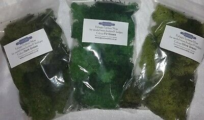 Foliage Lichen Moss for Model Trees Bushes Hedges 50g bag 3 colours available