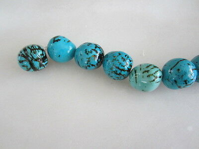 Polished Turquoise Blue Tagua Nut Wood Beads 18mm to 22mm Round 9p