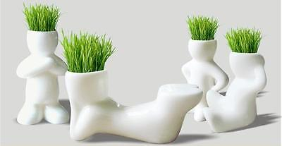 DIY Mini Novel Bonsai Grass Grow Doll Hair Lazy Man Plant Garden Sit Fun Gifts