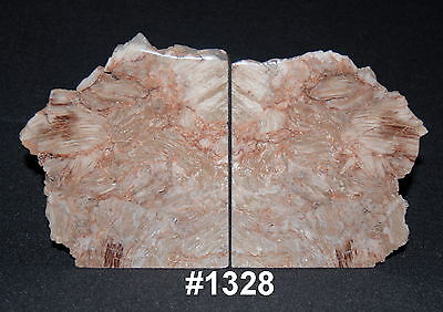 "Exquisite Petrified Wood Bookends 12 3/4"" wide 7 3/8"" tall 2 1/4"" thick 12.6 lbs"