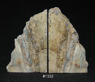 "Exquisite Petrified Wood Bookends 8"" wide x 6 1/2"" high x 4 1/2"" thick, 8.0 lbs."