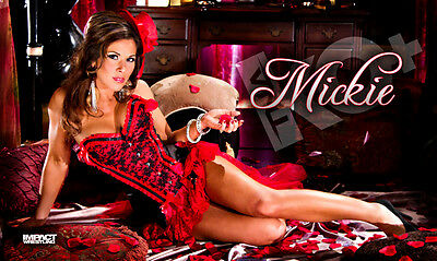 "Official TNA Impact Wrestling Mickie James ""Moulin Rouge"" 3ft x 5ft Banner"