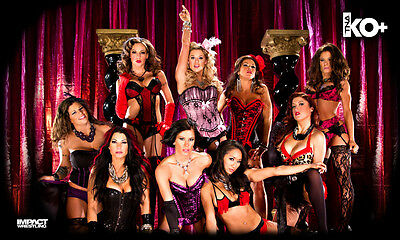"Official TNA Impact Wrestling Knockouts ""Moulin Rouge"" 3ft x 5ft Fabric Banner"