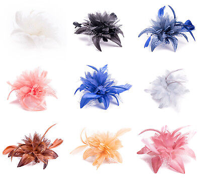 Flower Net Feather Fascinator Clear Comb Weddings Races Prom Ladies Fascinator