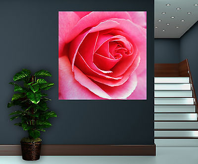Canvas Giclee Wall Prints Pink Rose Flower Colorful Photo Print Fine Art Decor