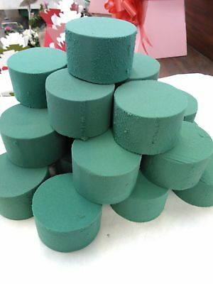 20 x Oasis Ideal Round Cylinder Wet Foam for Fresh Flowers