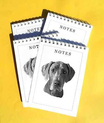 Great Dane Pack of 4, A6 Dog Notepads Gift Set
