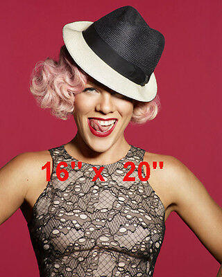 """Pink~Color~Hat~Poster~Photo~16"""" x  20"""""""