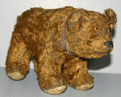 ANTIQUE  TEDDY  BEAR  WITH  PROVENANCE