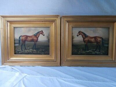 MAGNIFICENT EQUINE PAIR FRAMED ALIKE HANDSOME HORSE PORTRAITS PERFECT GIFT SET