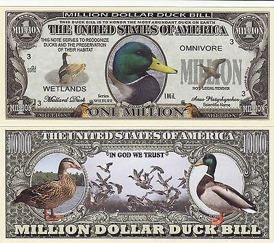 Novelty Notes / Fun Money - ENTE / Entenvogel / Stockente  *neu*