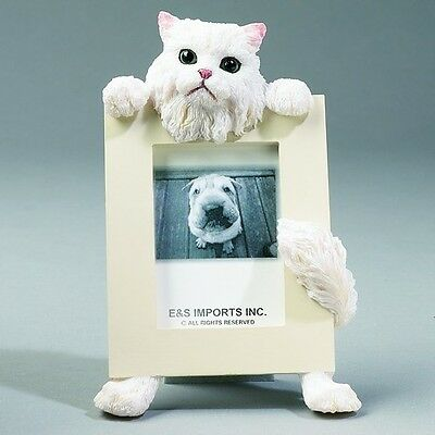 Persian Cat ~ Picture Frame #4