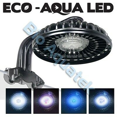 Arcadia Eco Aqua 30w High Power LED Spot Light - Blue | White | Freshwater | XPG