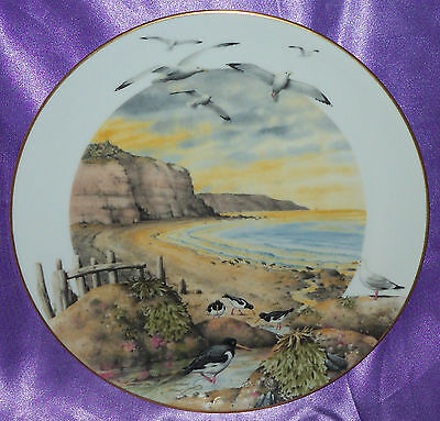 Vintage Royal Worcester February On The Coast Display Plate England Collectable
