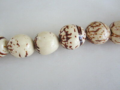 Polished Natural Cream & Brown Tagua Nut Wood Beads 18mm to 20mm Round 8p