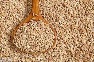 Farro Grain/ Spelt Grain 1Kg - An Ancient Grain - Reap The Benefits