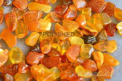1g Natural Genuine BALTIC AMBER Raw Rough Polished Yellow Red Butterscotch Green