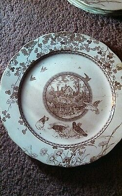 Brownfield and Son Lot of plates c. 1886