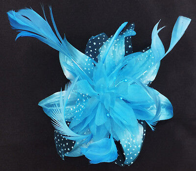 Bright Feather And Flower Fascinator On A Clip And Brooch Pin - Various Colours