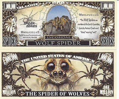 Novelty Notes / Fun Money - WOLFSPINNE / Spinne / Tarantel / Tarentula  *neu*