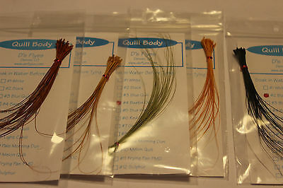 Fly Tying Quill Bodies ready stripped
