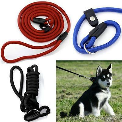Pet's Soft Nylon Rope Slip Training Leash Walking Lead Collar Leash Harness G