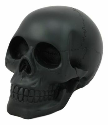 72d4d37fdc7 Halloween Decorative Black Dark Homo Sapien Skull Skeleton Figurine Made  Statue