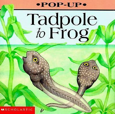 Tadpole to Frog (Play With Little Hippo)