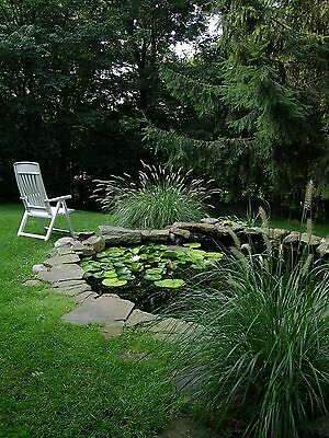 New Garden Pond Liner 7.6m Wide - Suitable for Fish - Plants - Water Feature
