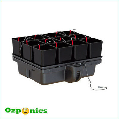 Platinum Modular System Hydrostar 80 With 12 Pots For Indoor Hydroponics