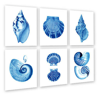 Blue Sea Shell Coastal Nautical Beach House 6p Full Queen