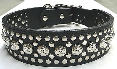Black Genuine Leather Dog Collar with Skulls & Rivets Made in the USA by Manzoor