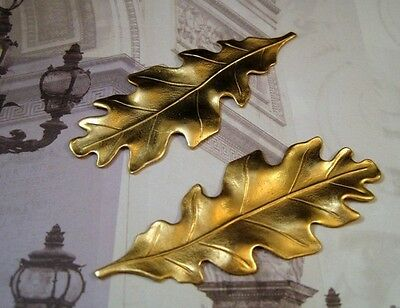 Large Raw Brass Oak Leaf Stampings (2) - S2987 Jewelry Finding
