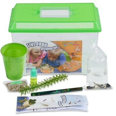 Frog Growing Kit: 2-Gallon Habitat with 2 FREE Tadpoles - Certificate to Redeem