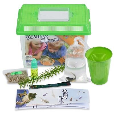 Frog Growing Kit: 1-Gallon Habitat with 1 FREE Tadpole - Certificate to Redeem