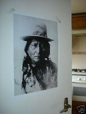 Indian Chief Sitting Bull NEW Poster Western